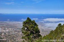 Дорога проходит выше облаков - 1000 Окон Гуимара на Тенерифе