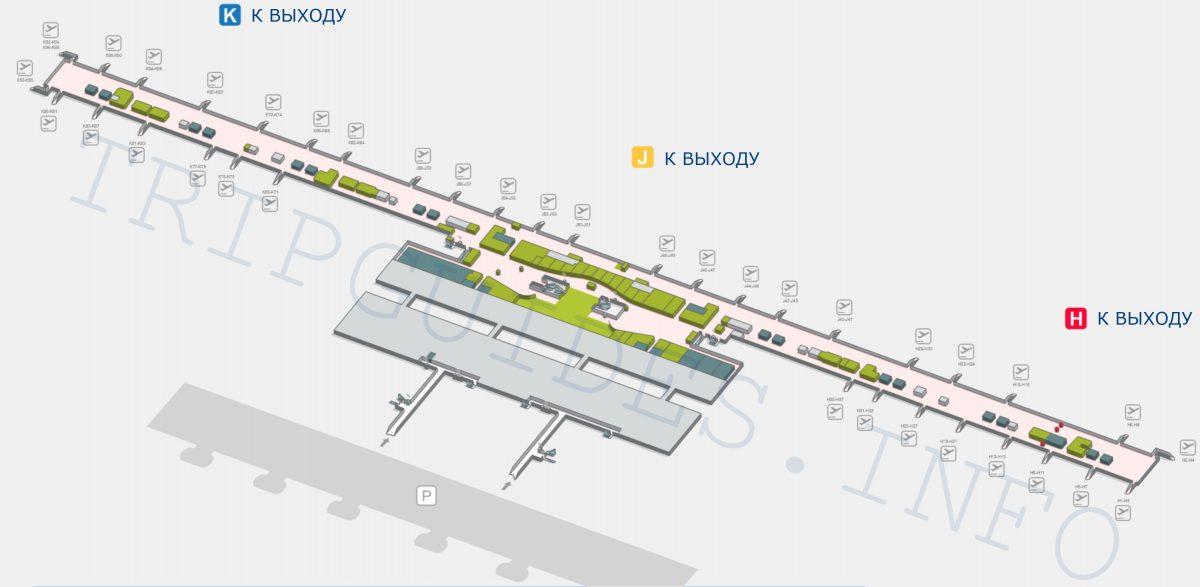 Схема аэропорта Мадрид Барахас Испания - терминал T4