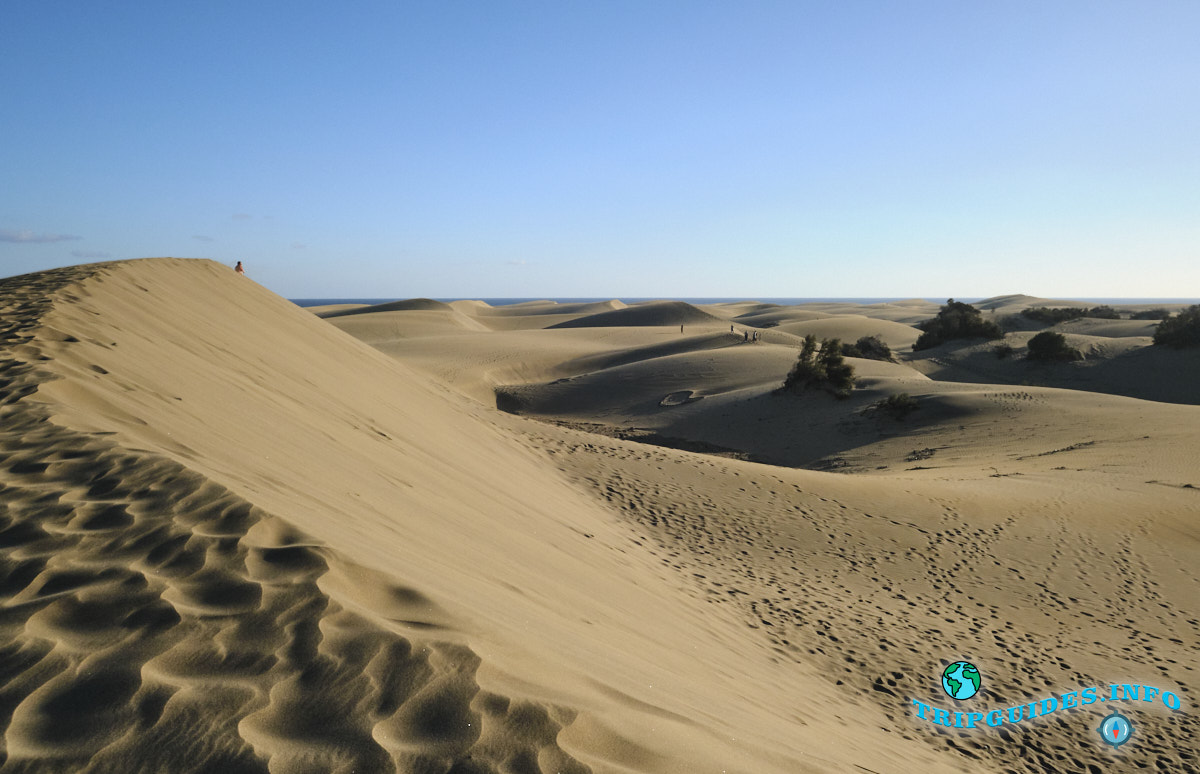 Дюны Маспаломас на Гран-Канарии