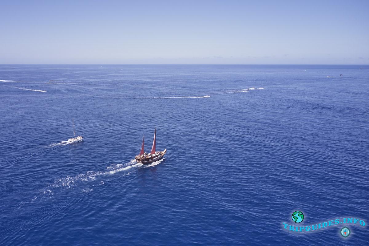 Морские экскурсии в Пуэрто Колон в Коста Адехе на Тенерифе