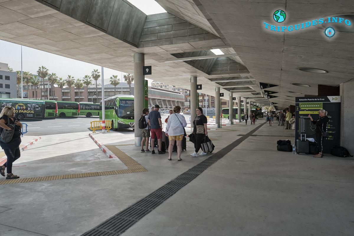 Автовокзал в Пуэрто-де-Ла-Крус автостанция на Тенерифе
