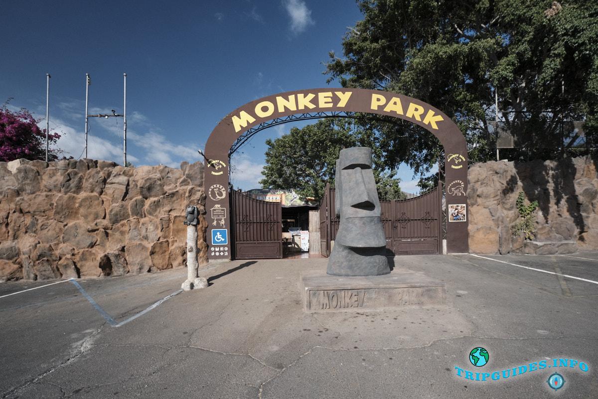 Манки парк / Парк Обезьян на Тенерифе
