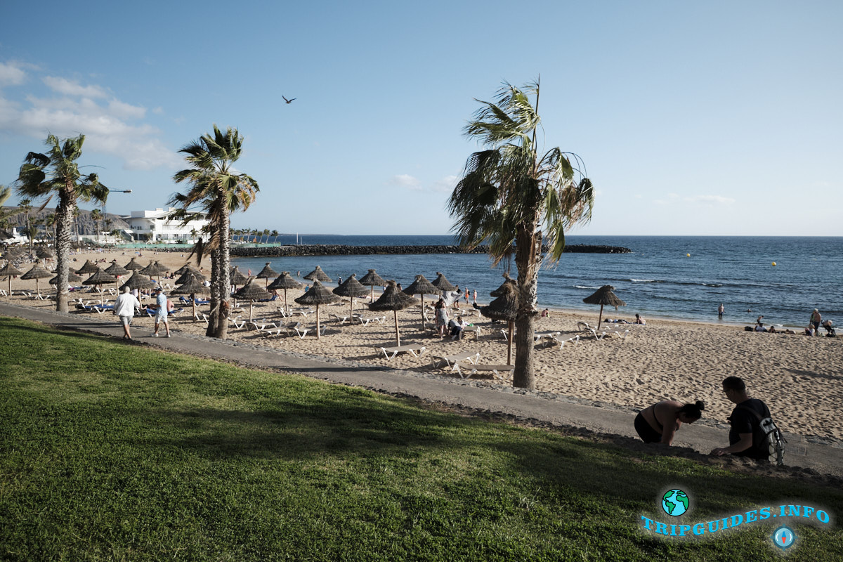 Зеленая травка рядом с пляжем Эль Камисон (Playa del Camison) - Лас-Америкас Тенерифе