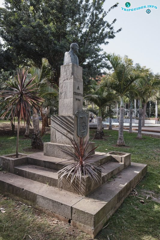 Парк Гарсии Санабрии в Санта-Крус-де-Тенерифе Канарские острова Испания