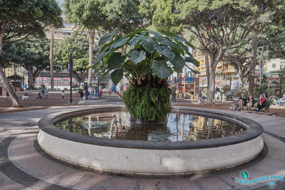 Площадь Пласа-дель-Чарко в Пуэрто-де-Ле-Крус на Тенерифе, Канарские острова, Испания