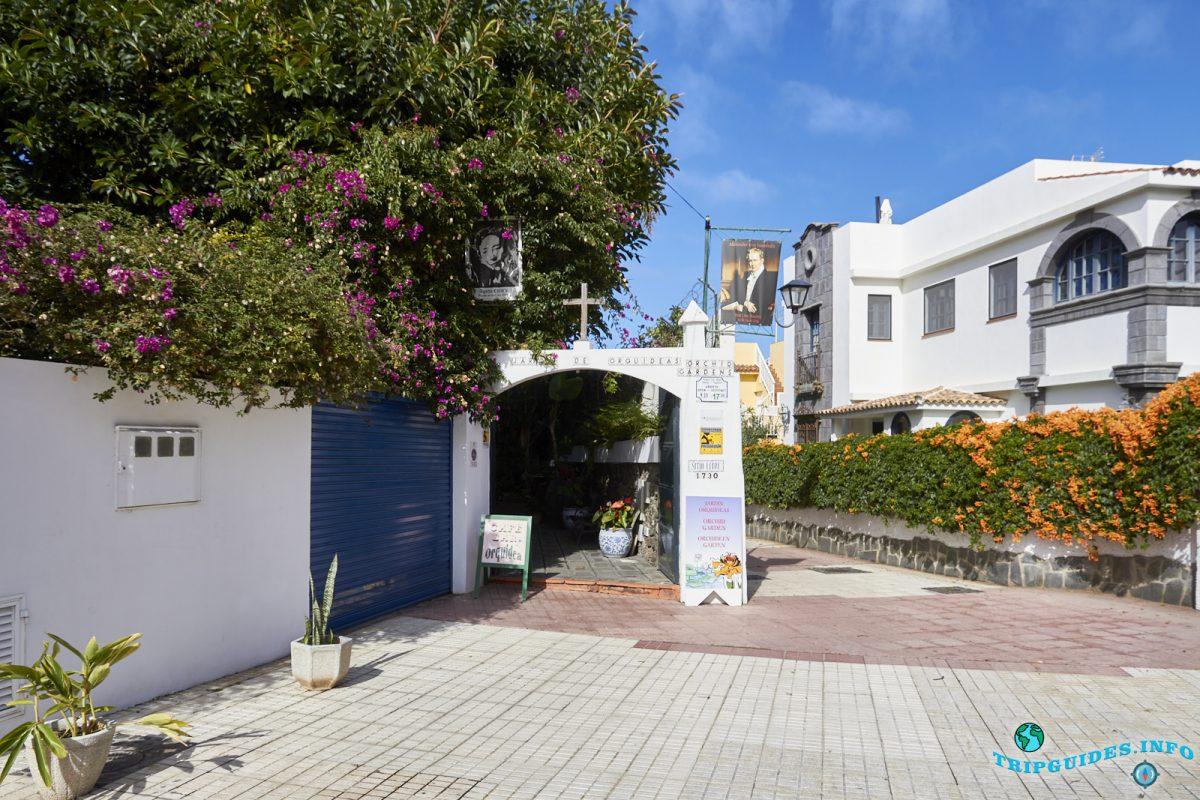 Сад Орхидей Ситио Литре в Пуэрто-де-Ле-Крус на Тенерифе, Канарские острова, Испания