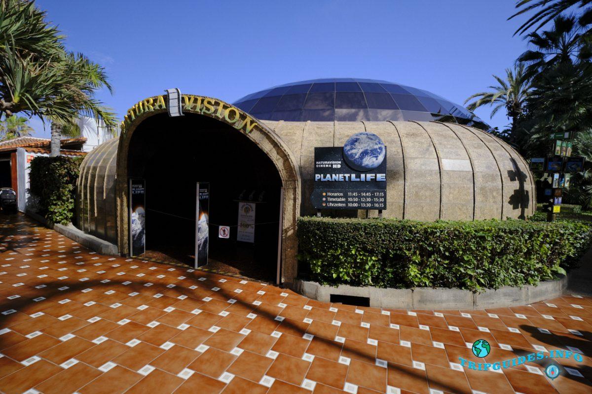 Кинотеатр Naturavision 3D в Лоро парке Тенерифе