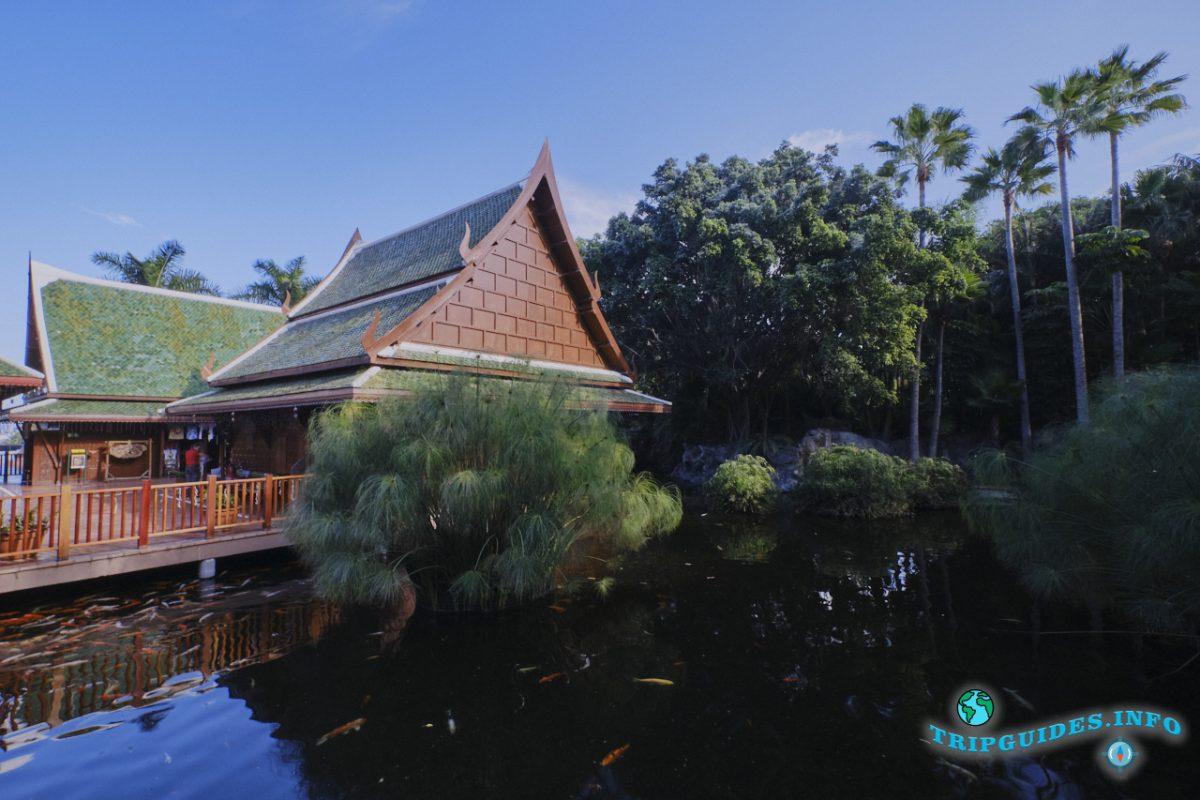 Тайская деревня в Лоро парке Тенерифе - карпы кои в прудах