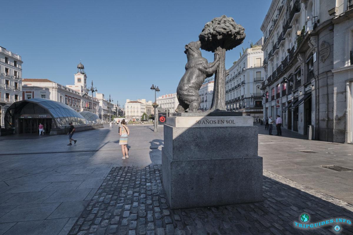 Медведь и земляничное дерево в Мадриде - столица Испании