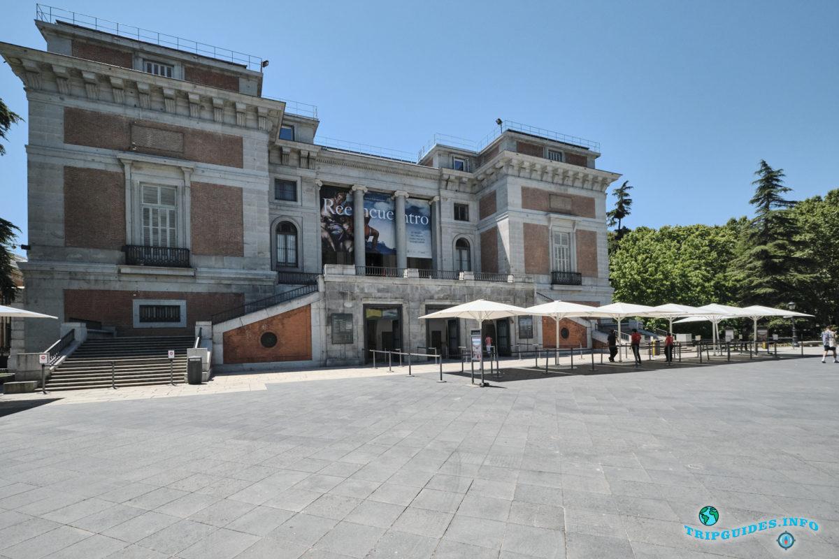 Экскурсии по Мадриду с гидом - Национальный музей изобразительного искусства - Прадо в Мадриде