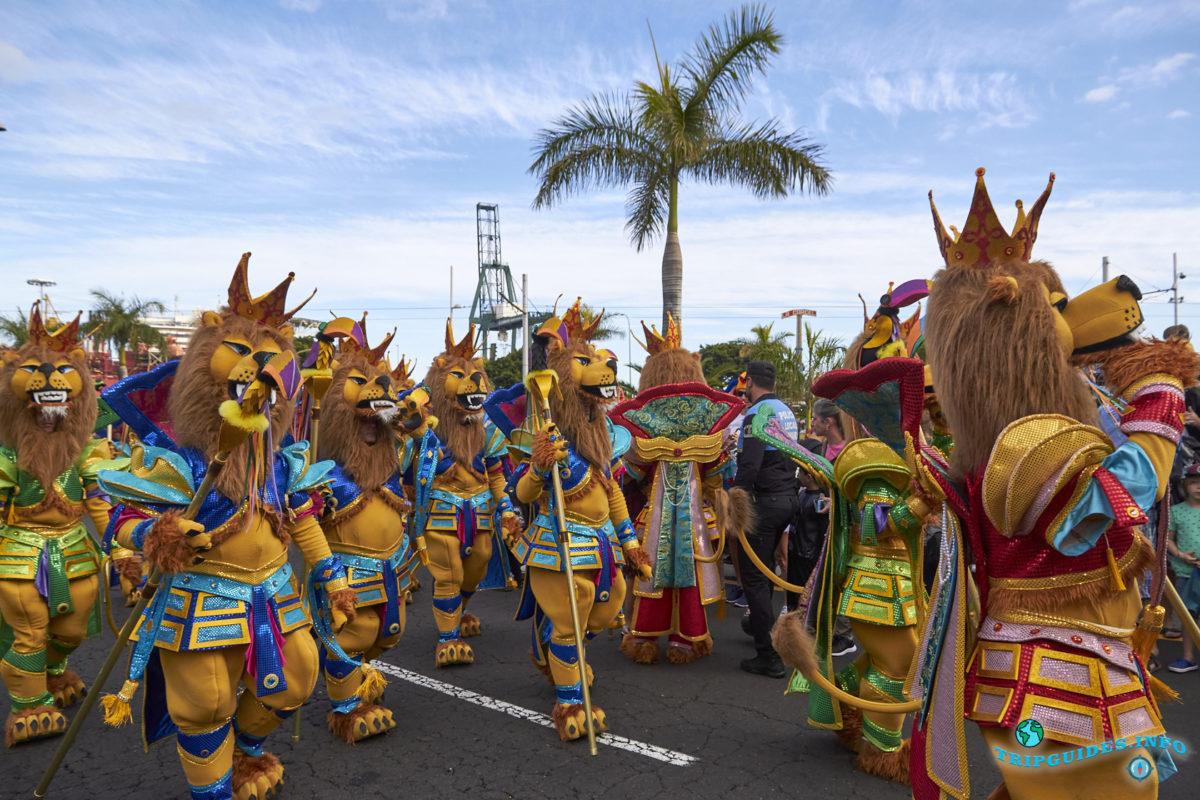 Карнавал в Санта-Крус-де-Тенерифе 2019
