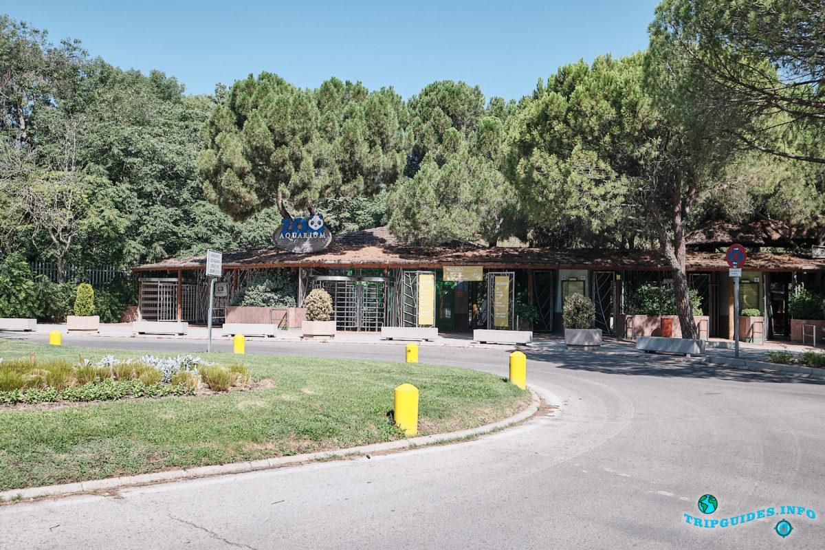 Мадридский зоопарк и аквариум (Zoo Aquarium) в столице Испании - Мадрид