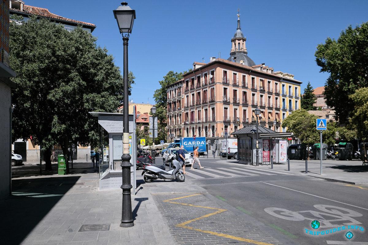 Башня церкви Сан-Адрес в Мавританском квартале Ла-Морерия в Мадриде - столица Испании