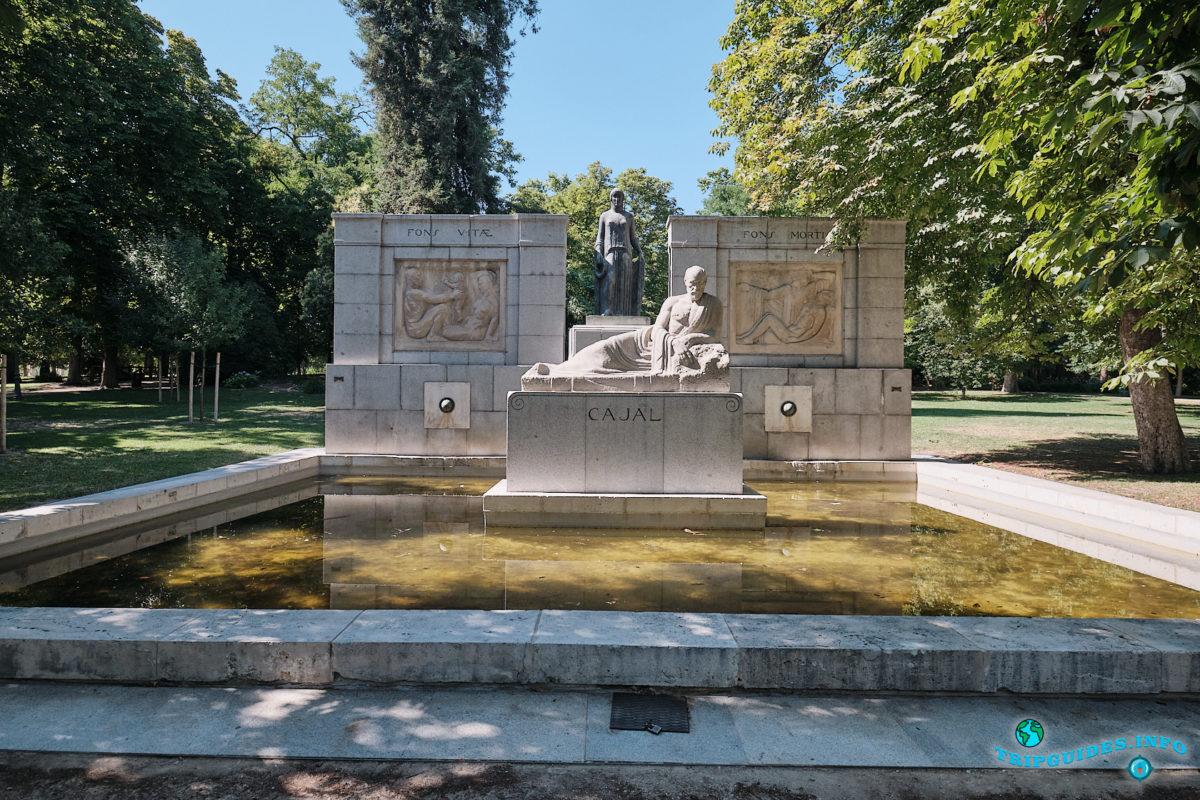 Памятник Сантьяго Рамону-и-Кахалу в парке Буэн-Ретиро в Мадриде - Испания (Parque del Buen Retiro)
