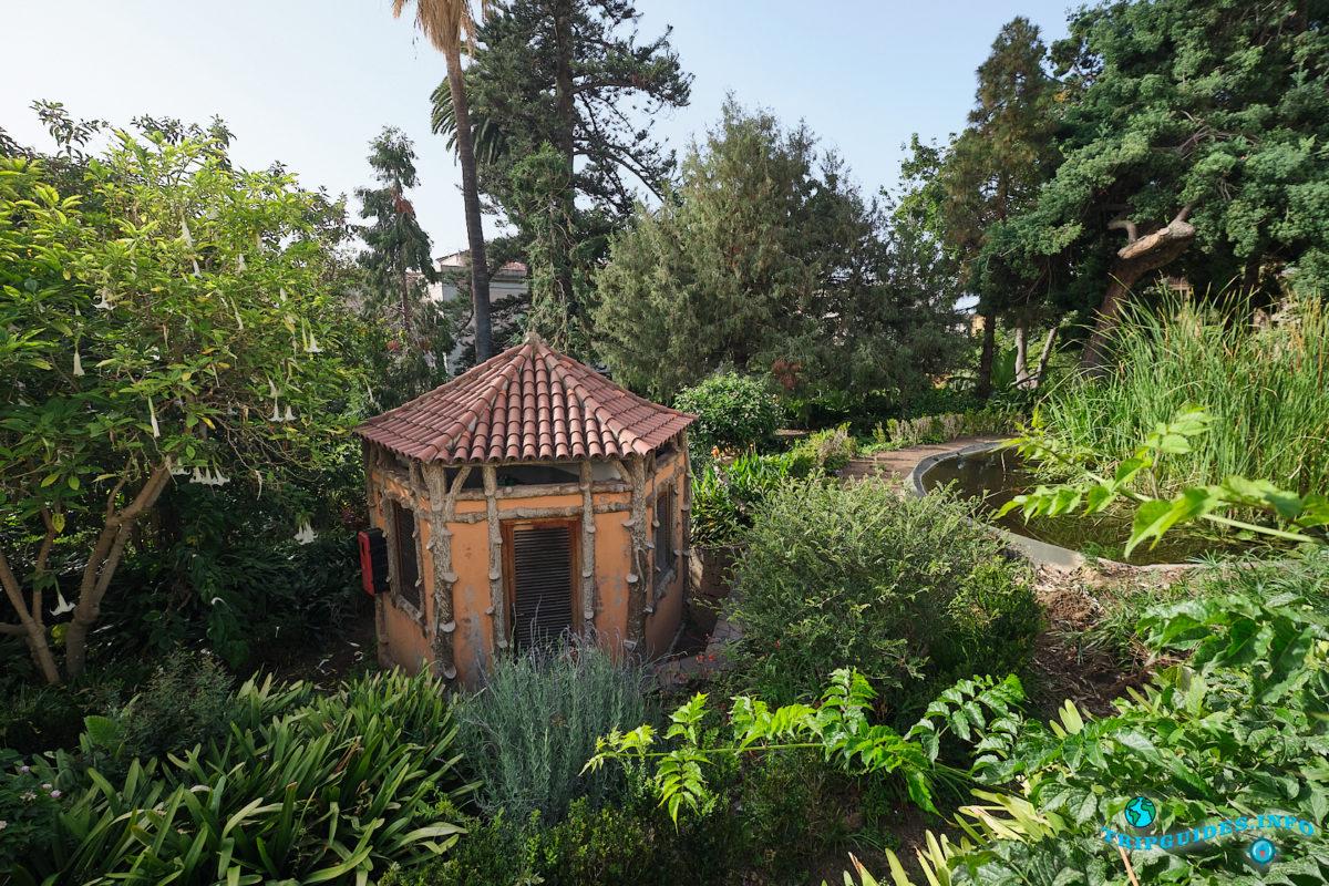 Ботанический сад Ихуэла-дель-Ботанико (Hijuela del Botánico) в Ла-Оротава на Тенерифе