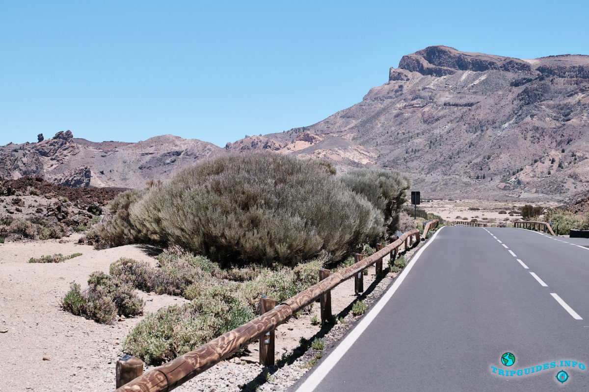 Смотровая площадка «Туфелька Королевы» в Национальном Парке Тейде на Тенерифе