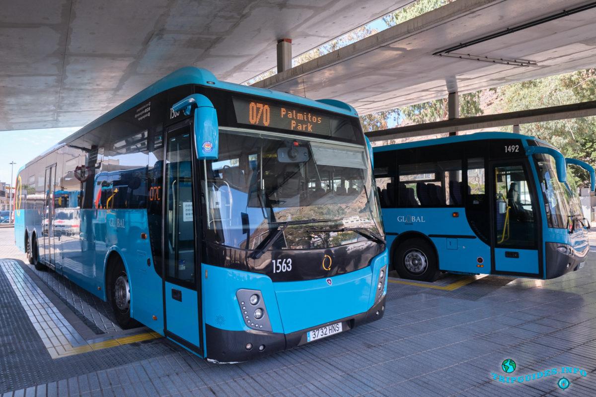 Автобусы в столице Лас-Пальмас-де-Гран-Канария