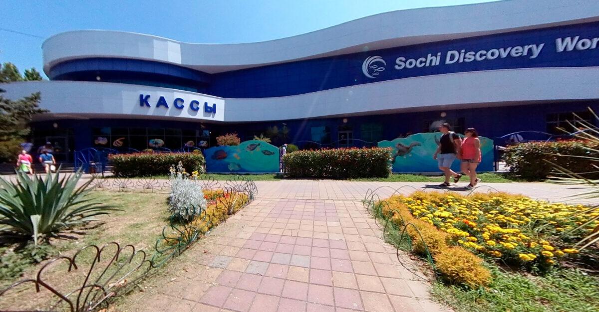 Океанариум Sochi Discovery World Aquarium в Адлер - Россия