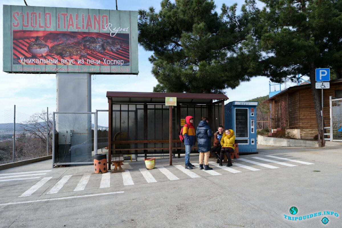Автобусная остановка в Сафари-парк Геленджик
