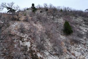 Вид с канатной дороги на горы - Парк Олимп в Геленджике