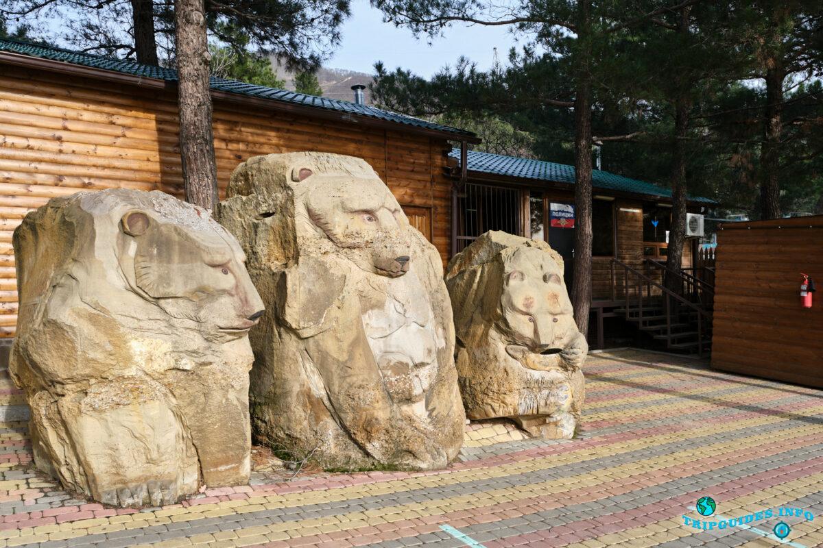 Касса Сафари-парк Геленджик