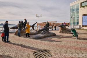 Арт объекты Акулы - Набережная в Геленджике