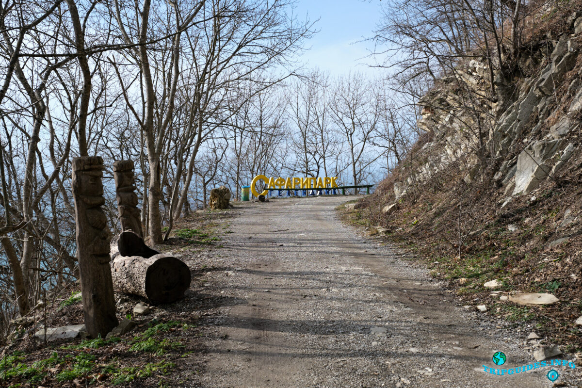 Дорога в 500-летнему грабу - Аллея сказок в Верхнем парке Сафари-парка Геленджик