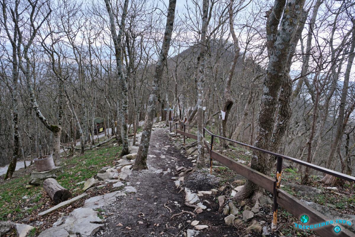 Верхний парк Сафари-парка Геленджик
