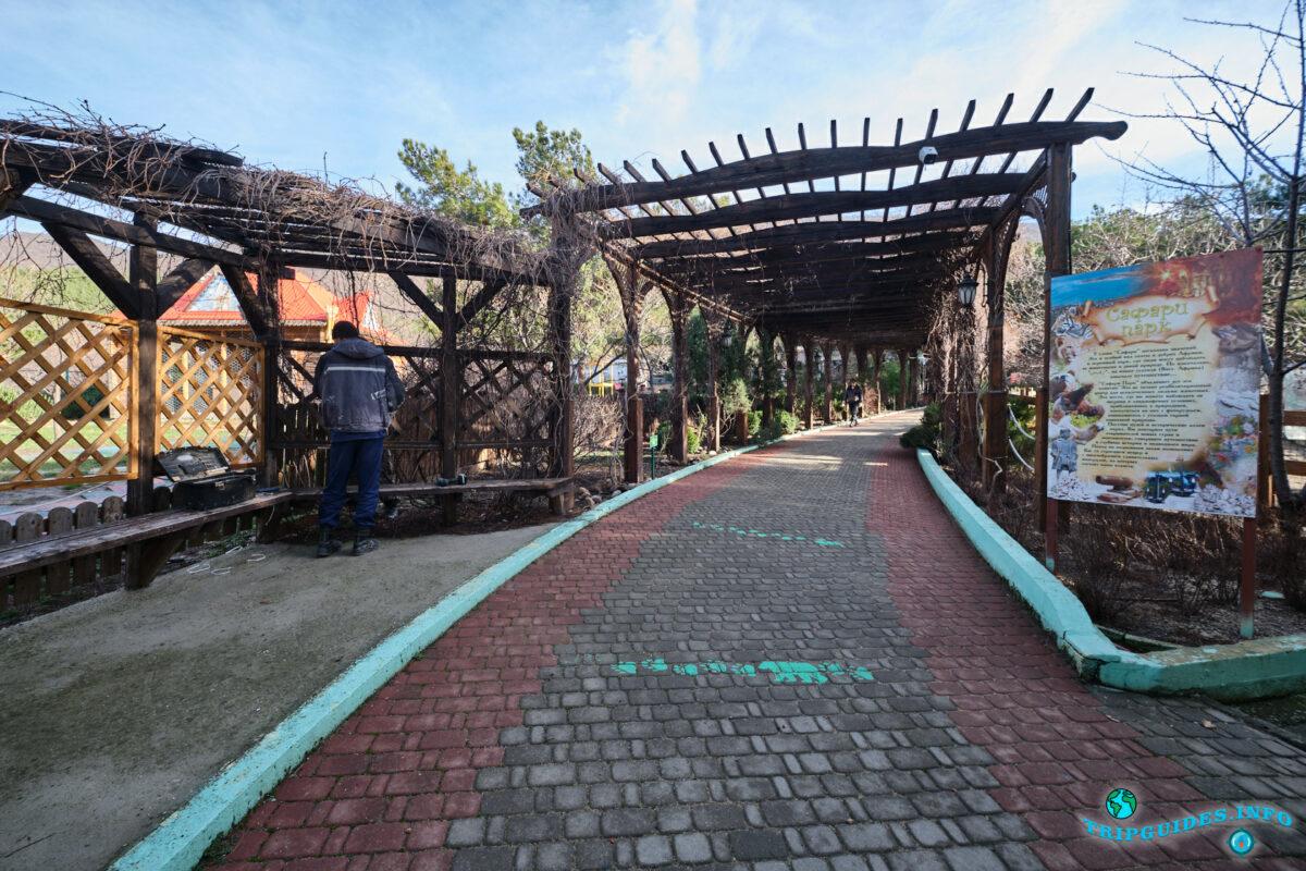 Главная аллея в зоопарке в Сафари-парк Геленджик