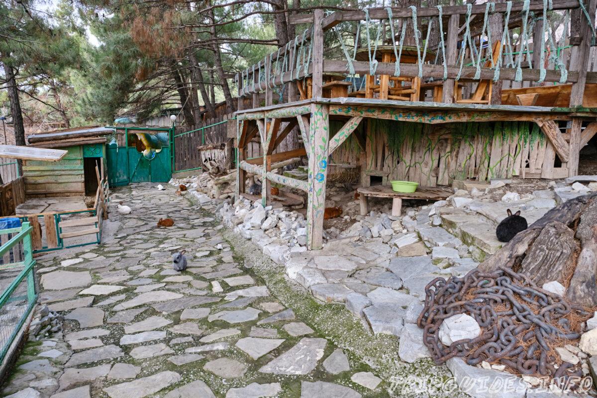 Зов Джунглей - Контактный зоопарк в Геленджике - Зайцы, кролики, морские свинки