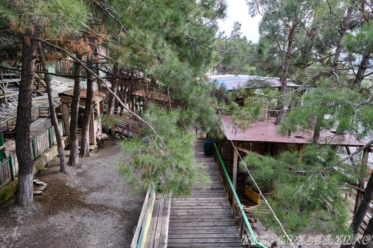 Зов Джунглей - Контактный зоопарк в Геленджике - территория парка