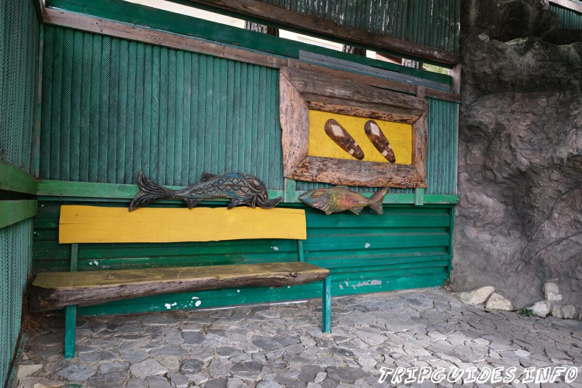 Зов Джунглей - Контактный зоопарк в Геленджике - место отдыха