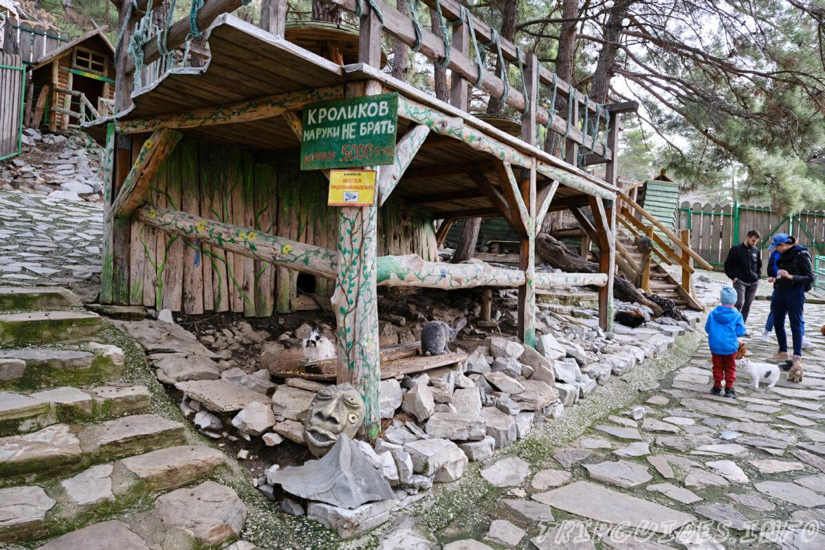 Зов Джунглей - Контактный зоопарк в Геленджике