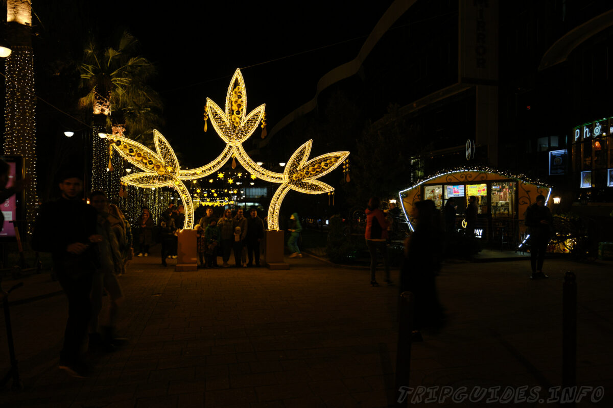 Навагинская улица в Сочи вечером на Новый год