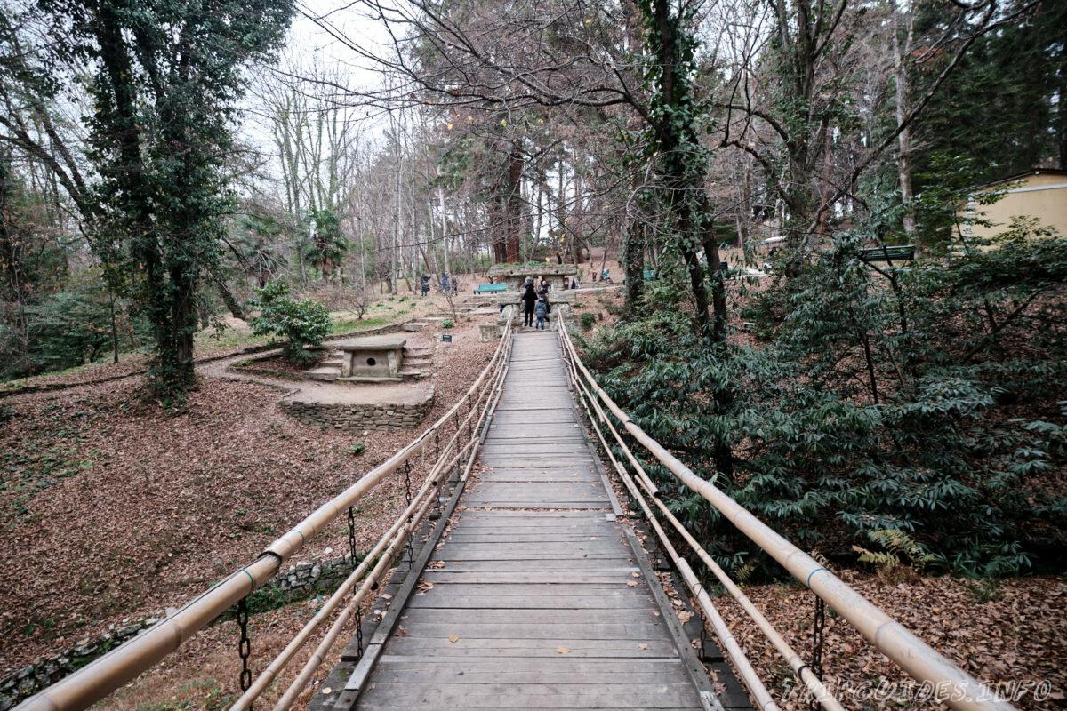 Сочинский дендрарий - подвесной мост и дольмен