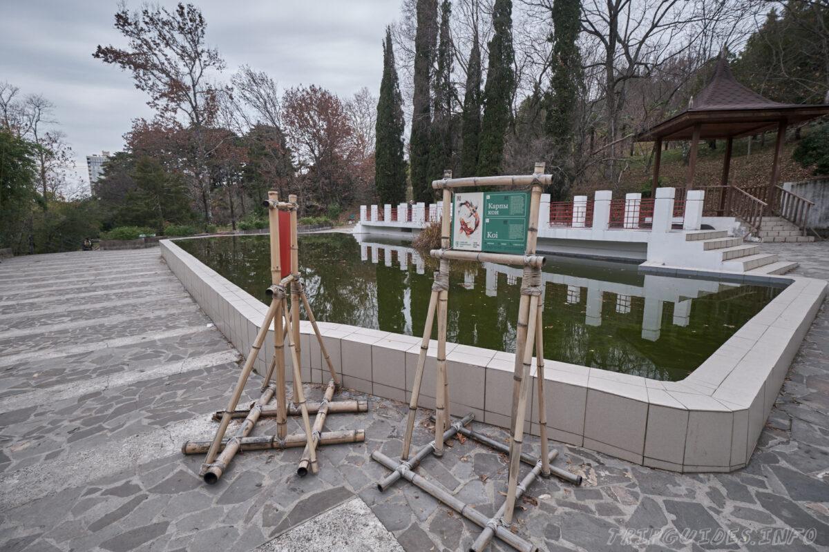 Сочинский дендрарий - Китайский дворик