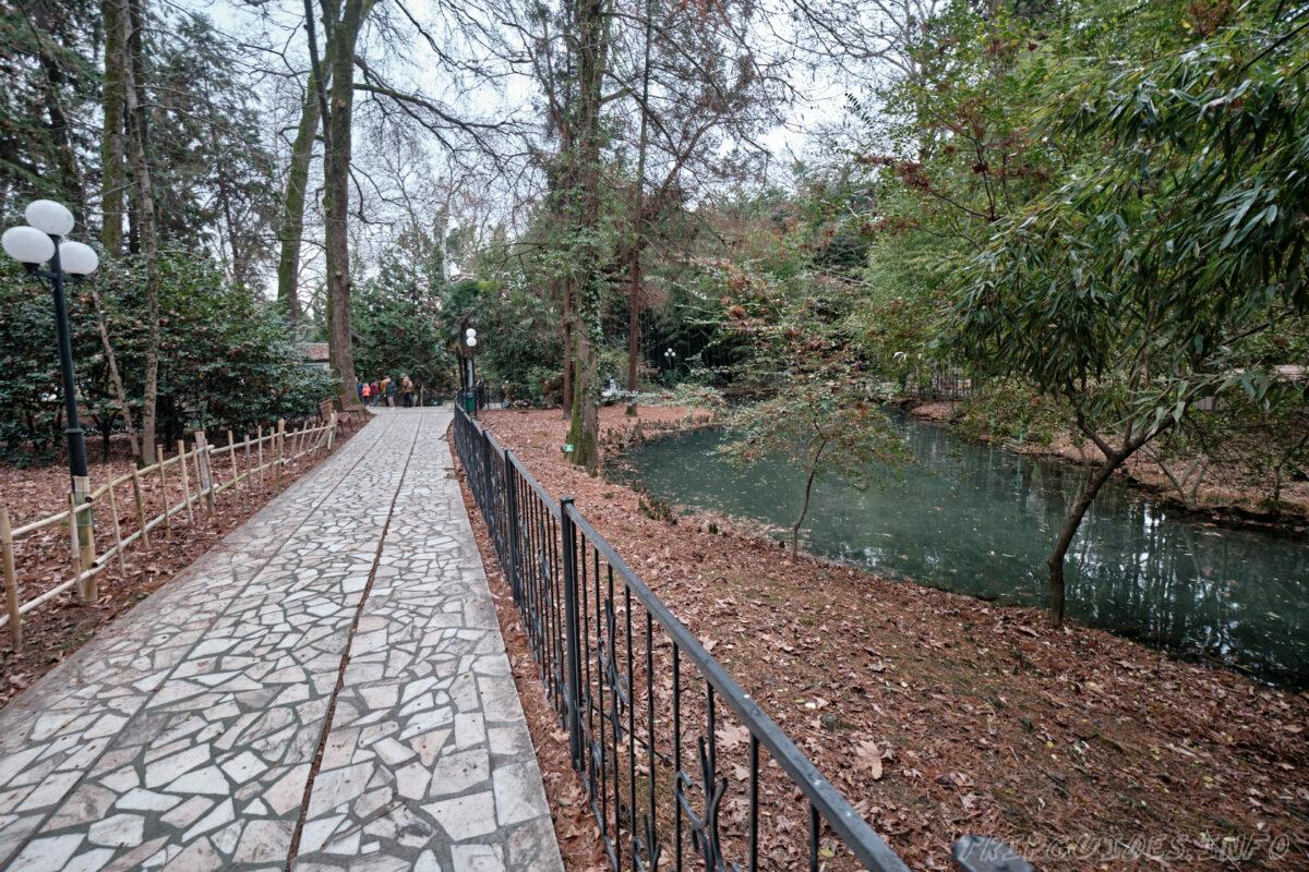 Сочинский дендрарий - нижний парк - прогулочные аллеи