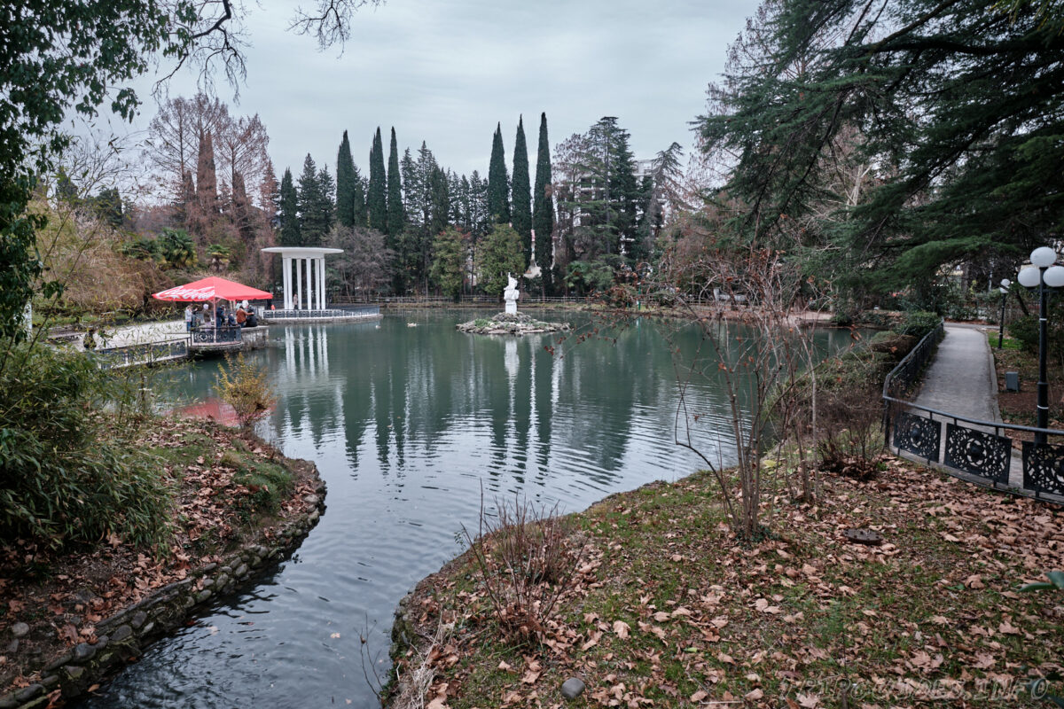 Сочинский дендрарий - нижний парк - пруд с лебедями и утками