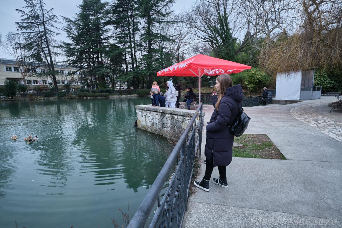 Сочинский дендрарий - нижний парк - пруд с утками