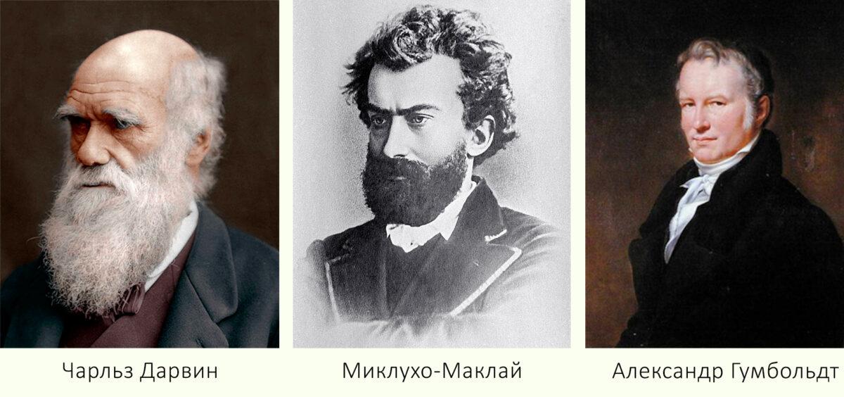 История Тенерифе - Чарльз Дарвин, Миклухо-Маклай, Александр Гумбольдт