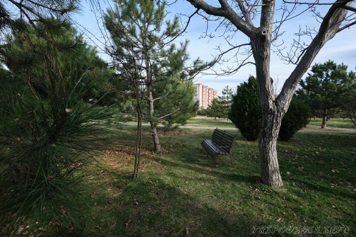 Парк «Ореховая роща» в Анапе