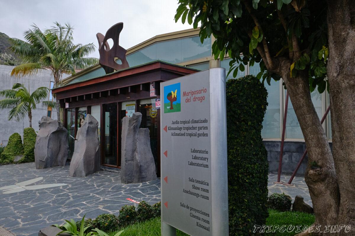 Парк Бабочек в Икод-де-Лос-Винос - Тенерифе