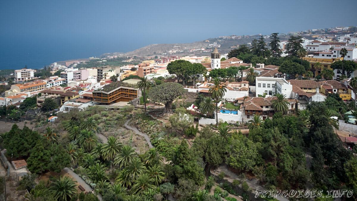 Вид на парк Драго в Икод-де-Лос-Винос на Тенерифе в Испании